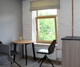 Loft design studio apartment