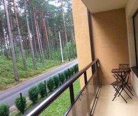 Apartment in Roja